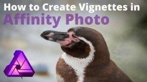 How to create vignette in Affinity Photo