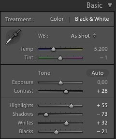 Basic Panel adjustments in Lightroom for black and white images