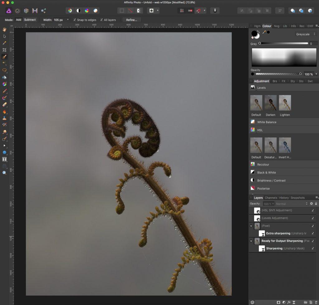 Output sharpened for web finished - Affinity Photo