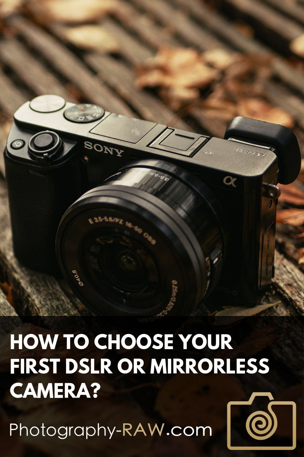 How to Choose Your First DSLR or Mirrorless Camera