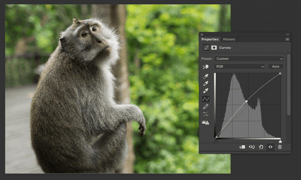 Create dodge layer brightening the image using the curve.