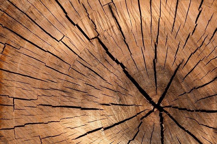 17-wood