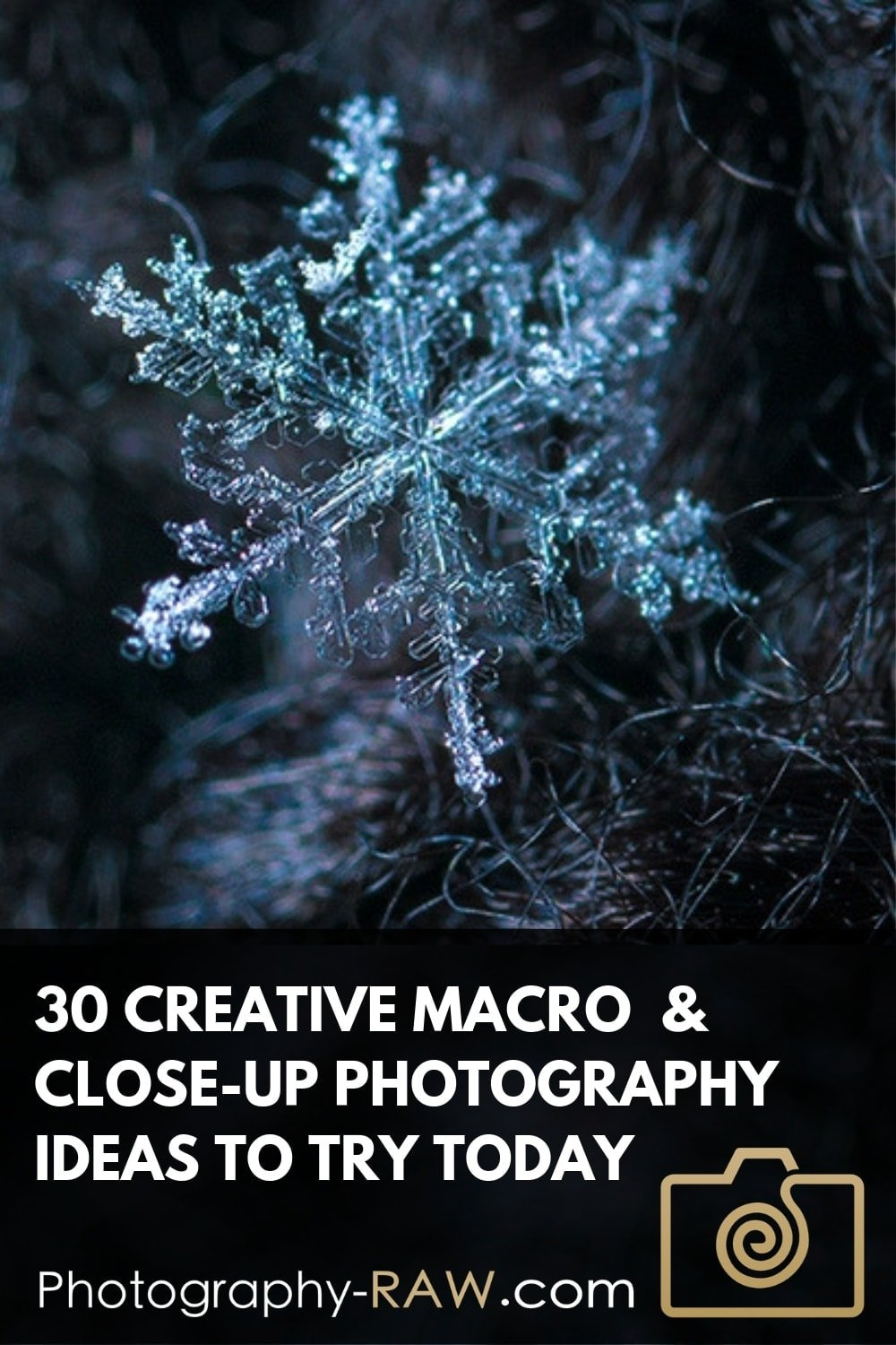 30 Creative Close-up and Macro Photography Ideas to Try Today