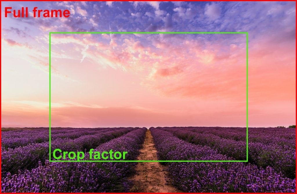DIfference between full frame vs crop sensor camera