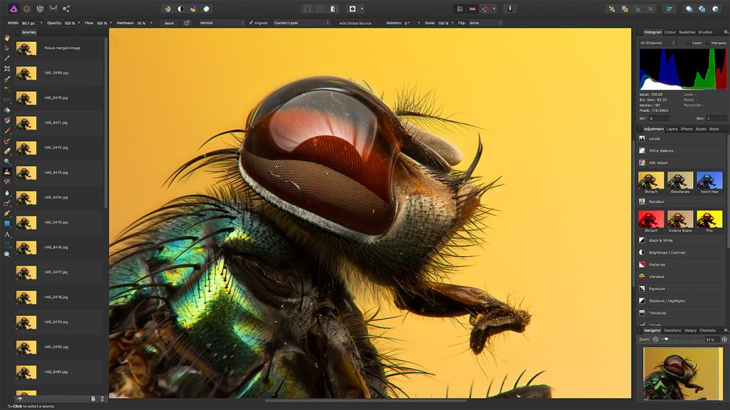 Affinity Photo Review: Focus Merge is particular interesting for Macro Photographers