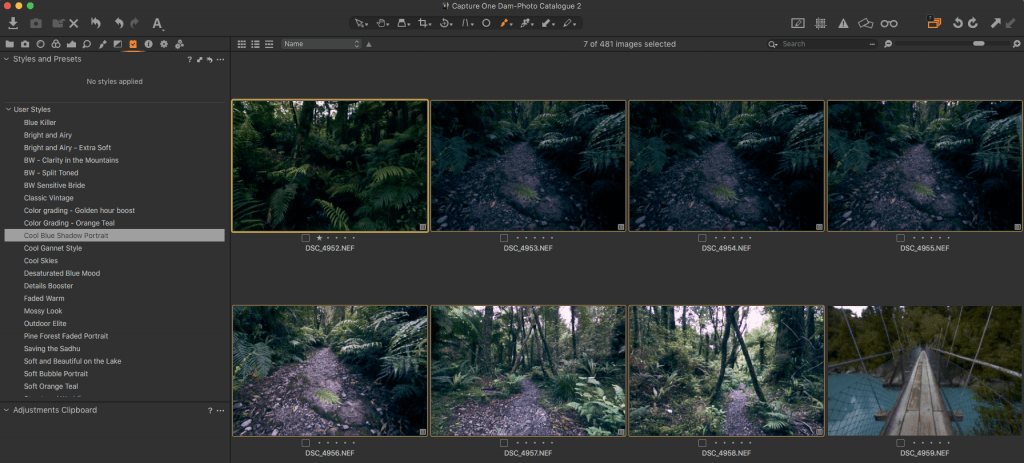 Applying a style to multiple images in Capture One