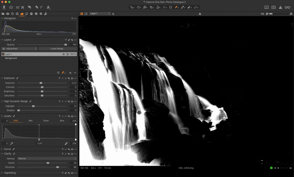 grayscale representation of a luminosity mask in capture one