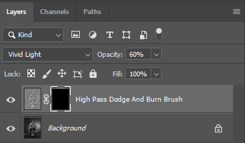a blank layer mask can make it appear as the photoshop action is not working