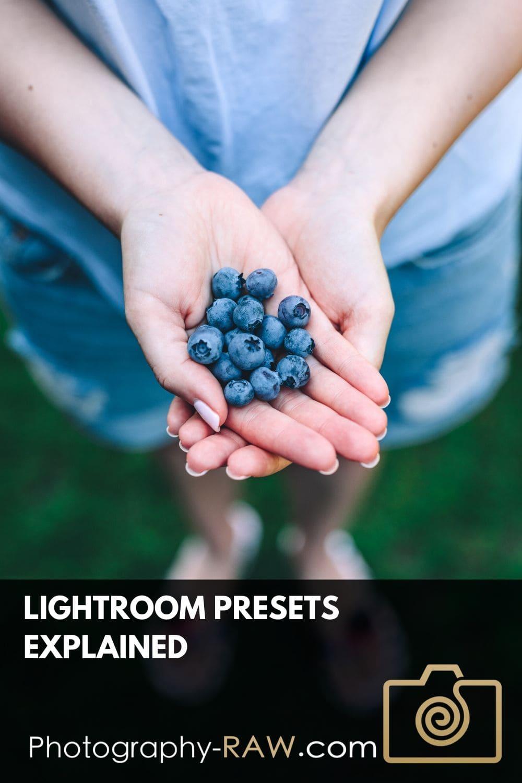 Lightroom Presets Explained