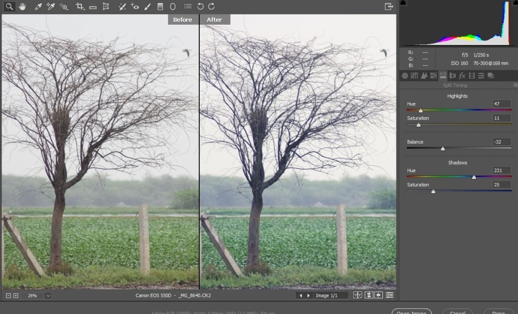 Use split toning in ACR to change colors in Photoshop