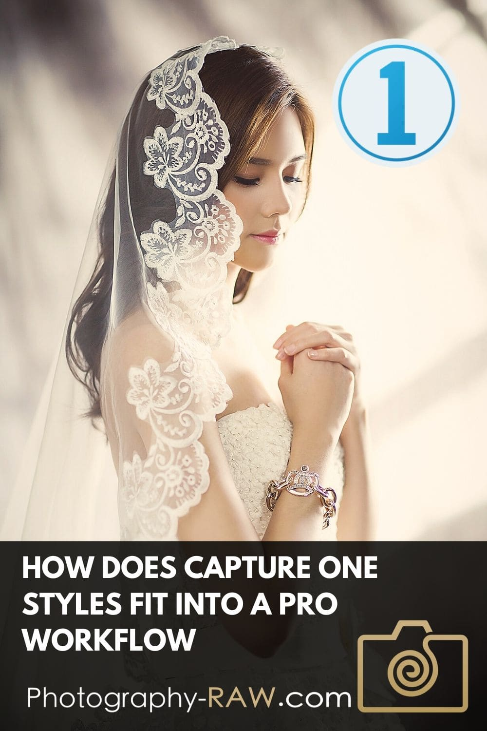 We will explore how Capture One Styles fit into a professional workflow, and help you deliver work to clients, a website, magazine, image base or similar.