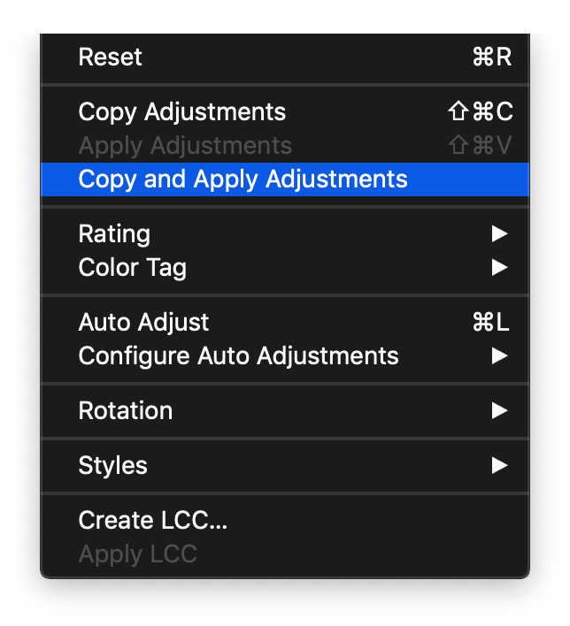 Improved copy and apply between layers in Capture One 20