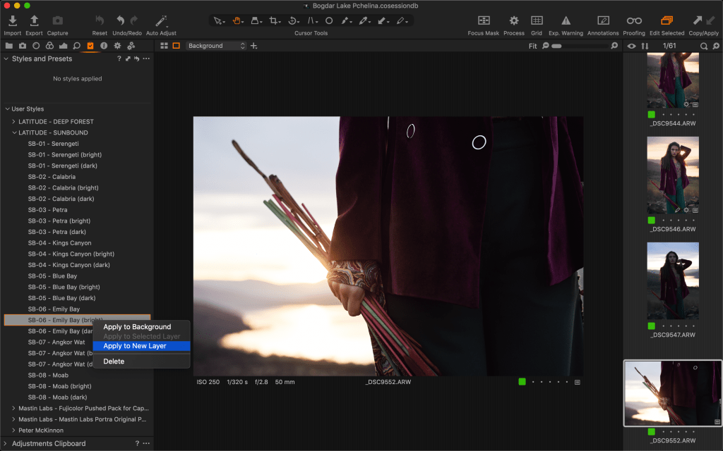 Capture One UI Screenshot of Styles Tool