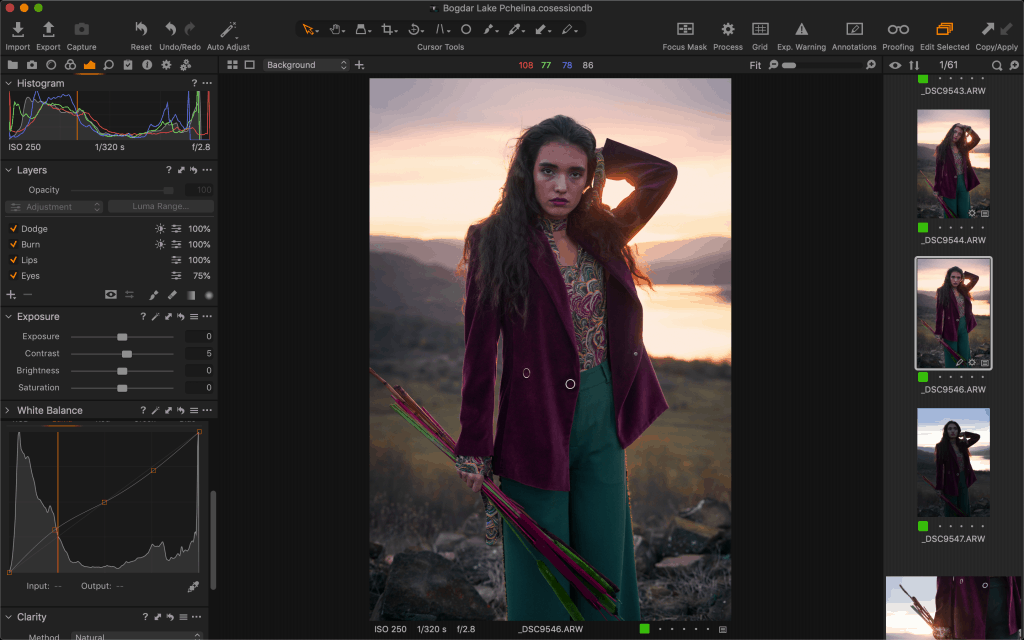 Capture One interface of the Curve Tool.