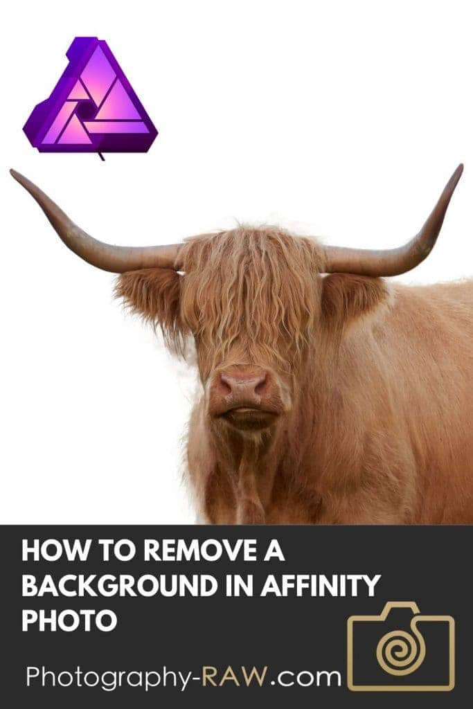 How to Remove a Background in Affinity Photo