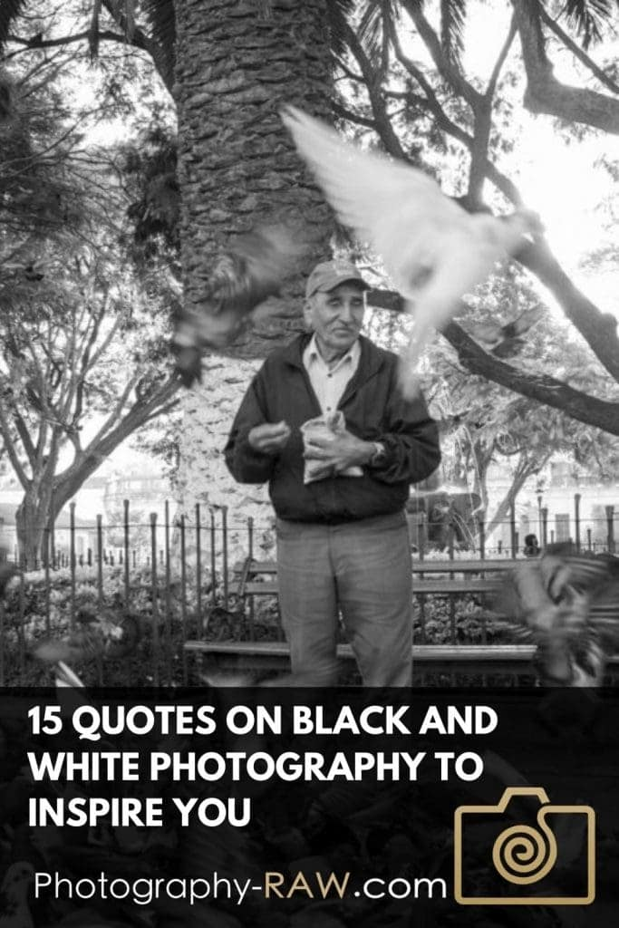 15 Quotes On Black And White Photography To Inspire You