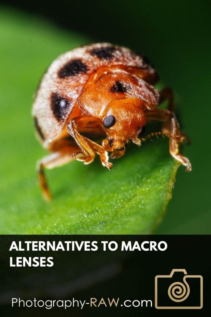 Alternatives to Macro Lenses